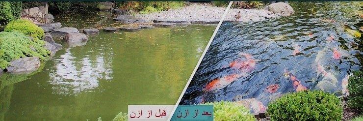 تاثیر ازن در استخر پرورش ماهی